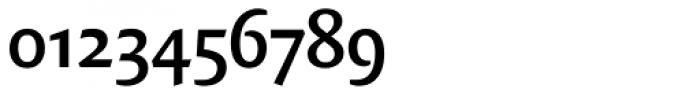 FF Quadraat Sans OT DemiBold Font OTHER CHARS