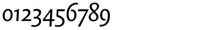 FF Quadraat Sans OT Italic Font OTHER CHARS