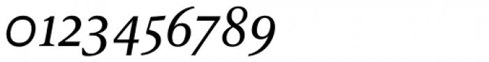 FF Reminga OT Italic Font OTHER CHARS