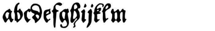 FF Schoensperger Font LOWERCASE