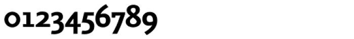 FF Seria Sans OT Bold Font OTHER CHARS