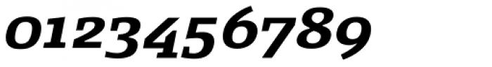 FF Signa Slab OT Bold Italic Font OTHER CHARS
