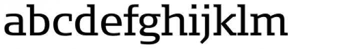 FF Signa Slab OT Book Font LOWERCASE