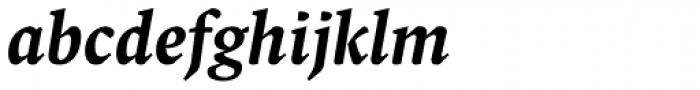 FF Spinoza OT Medium Italic Font LOWERCASE