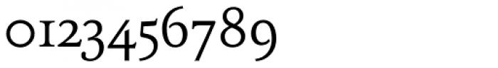 FF Tibere OT Font OTHER CHARS