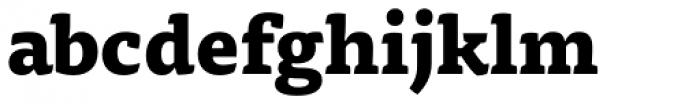 FF Tisa OT ExtraBold Font LOWERCASE