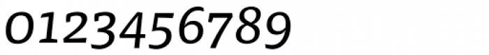 FF Tisa OT Italic Font OTHER CHARS