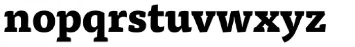 FF Tisa Pro ExtraBold Font LOWERCASE