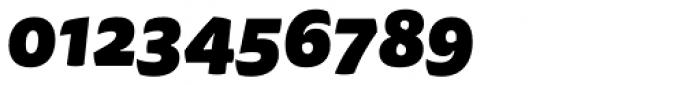 FF Tisa Sans OT Black Italic Font OTHER CHARS