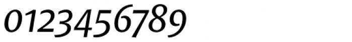 FF Tundra Pro Italic Font OTHER CHARS