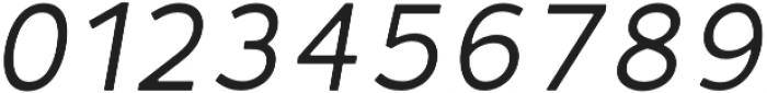 Fibon Neue Italic Round otf (400) Font OTHER CHARS