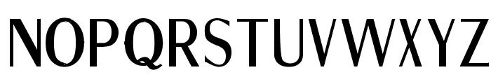 Fine Sans Bold Font LOWERCASE