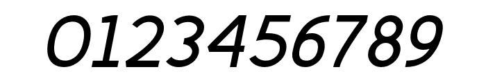 Fineness Pro Bold Italic Font OTHER CHARS