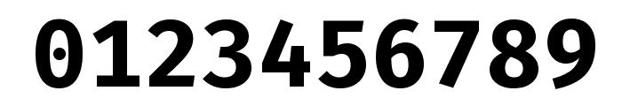 Fira Mono Bold Font OTHER CHARS