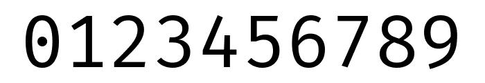Fira Mono Regular Font OTHER CHARS
