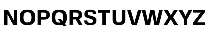 FivoSans-Bold Font UPPERCASE