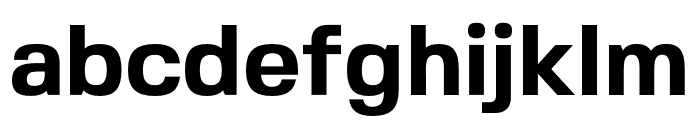 FivoSans-Bold Font LOWERCASE