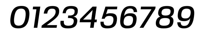 FivoSans-MediumOblique Font OTHER CHARS