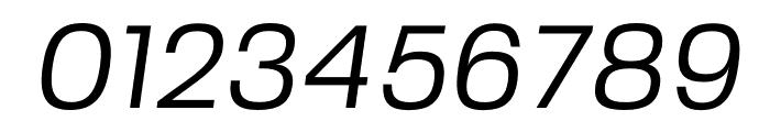 FivoSans-Oblique Font OTHER CHARS