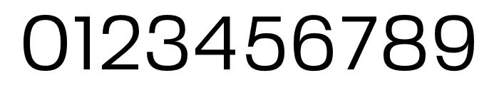FivoSans-Regular Font OTHER CHARS