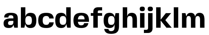 FivoSansModern-Bold Font LOWERCASE