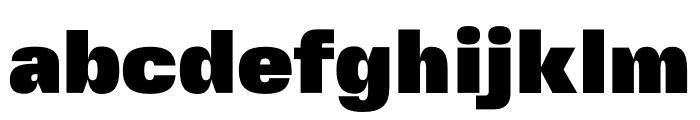 FivoSansModern-ExtraBlack Font LOWERCASE