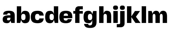 FivoSansModern-Heavy Font LOWERCASE