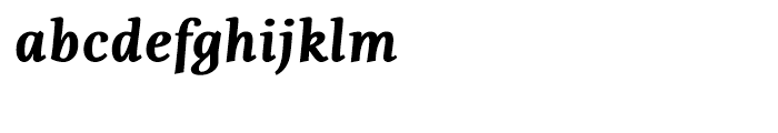 Fiesole Caption Black Italic Font LOWERCASE
