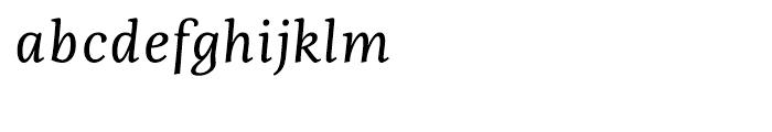 Fiesole Caption Italic Font LOWERCASE
