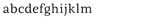 Fiesole Caption Light Font LOWERCASE