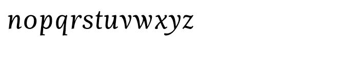 Fiesole Display Italic Font LOWERCASE