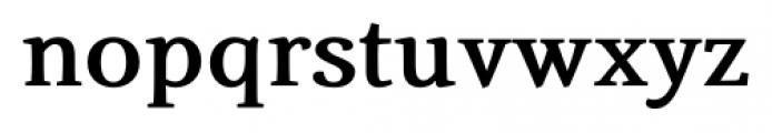Fiesole Caption Heavy Font LOWERCASE