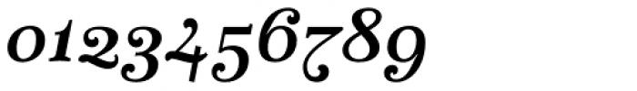 Fidelia Script Bold Font OTHER CHARS
