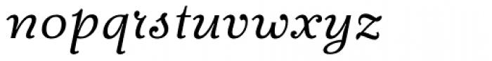 Fidelia Script Light Font LOWERCASE