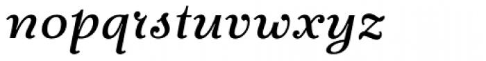 Fidelia Script Regular Font LOWERCASE
