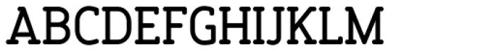 Finalist Round Slab Medium Font UPPERCASE