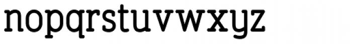 Finalist Round Slab Medium Font LOWERCASE