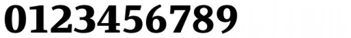 Fiona Serif Black Font OTHER CHARS