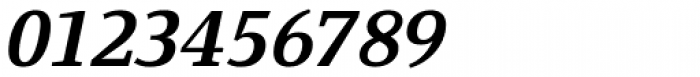 Fiona Serif Bold Italic Font OTHER CHARS
