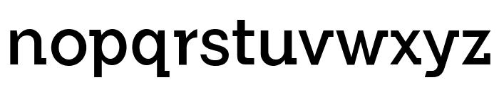 FlamanteSemiSlabBook Font LOWERCASE