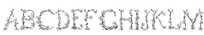 Fleurs de Liane Font LOWERCASE