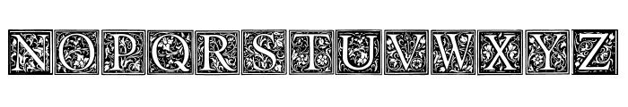 Floral Capitals Regular Font LOWERCASE