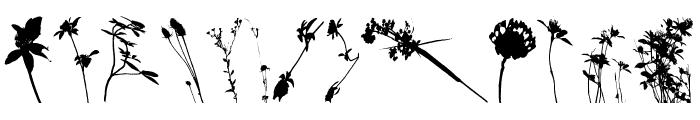 Floral Flush Font UPPERCASE