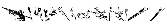 Floral Flush Font LOWERCASE