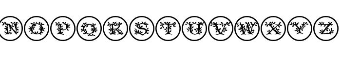 FloraliaCaps Font LOWERCASE