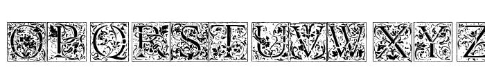 Florana_Initials Font LOWERCASE