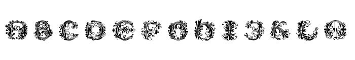 FlowerPowerRound-Medium Font UPPERCASE