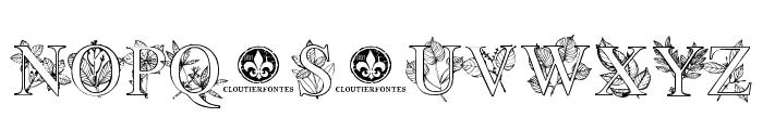 FlowerProDemo Regular Font LOWERCASE