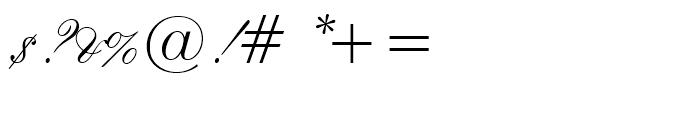 Flemish Script Regular Font OTHER CHARS