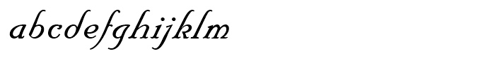 Floridian Script Regular Font LOWERCASE